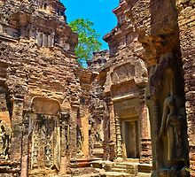 Temples of the Gods, Cambodia by David  Perea
