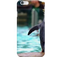 Penguin Parade at London Zoo ZSL  iPhone Case/Skin