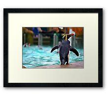 Penguin Parade at London Zoo ZSL  Framed Print