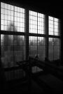 Urban Landscape # 4 Casula Powerhouse Window by Juilee  Pryor