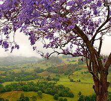 Tropical hide-away by Mel Brackstone
