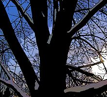 Comic Abstract Shaded Snow Tree by steelwidow