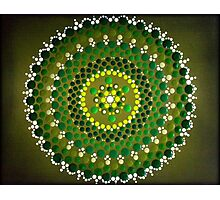 Green Starburst Photographic Print