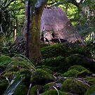 Waimea Hut by karolina