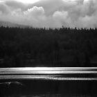 Radiant by lanebrain photography