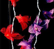 Fairy Lights by EricHands