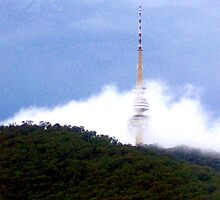 the telstra tower by caity