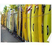 Surf ski Poster