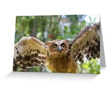 Spread Those Wings Greeting Card