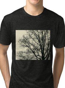 Fall Tree Silhouette Vector Yellow Tri-blend T-Shirt