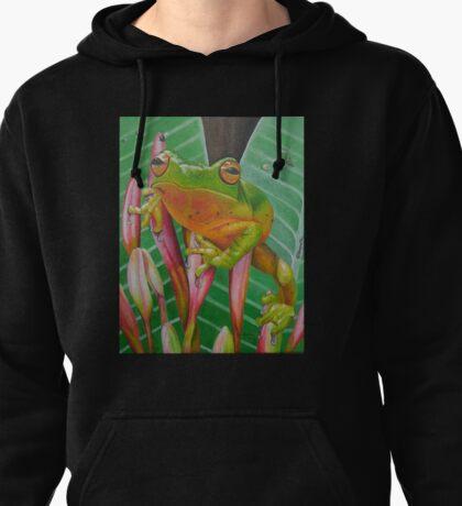 Tropical Frog Pullover Hoodie