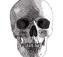 Skull by RikReimert