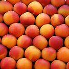 Nectarines by Arie Koene