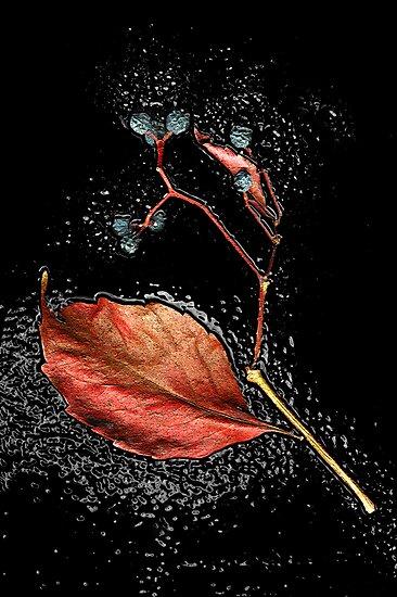 Leaf in tar by Silvia Ganora