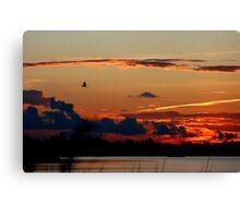 Egret's Evening Flight Canvas Print