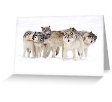 Dysfunctional Family - Timber Wolf Greeting Card