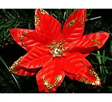 Christmas Wish Photographic Print