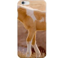Little Pinto Colt iPhone Case/Skin