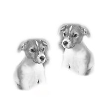 puppy dogs by flashcompact