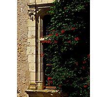 Hidden Window Photographic Print