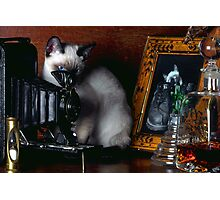Litchfield Photographic Print
