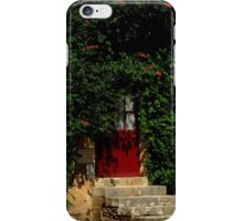 Hidden House iPhone Case/Skin
