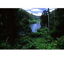 Aqua Vista Photographic Print