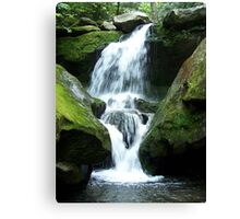 Tennessee Fountain Canvas Print