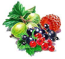 Very Very Berry  by Irina Sztukowski