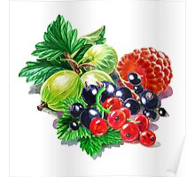 Very Very Berry  Poster