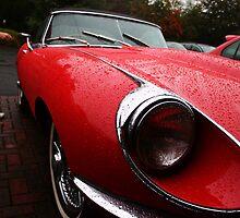 Jaguar e-type by Matthew  Chater