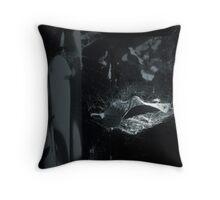 Suspended Dreams Were Failed Reality Throw Pillow
