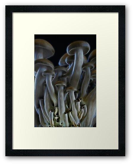 Magic Mushrooms by Ann Garrett