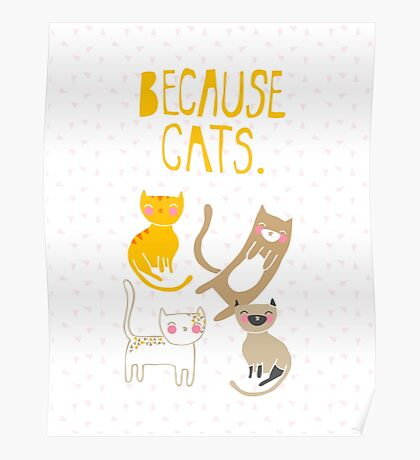 Because Cats. Poster