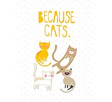 Because Cats. Photographic Print