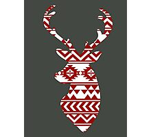 Aztec Deer Photographic Print