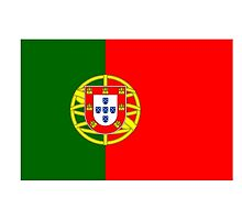 Portuguese Flag, Flag of Portugal, Pure & Simple by TOM HILL - Designer