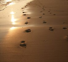 Footsteps on the Exe by gemmagrace