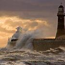 Stormy Seas by Anna Ridley