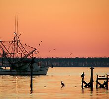 Shrimp Boat & Birds by Jonicool