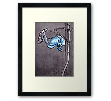 Morning Orchid Framed Print