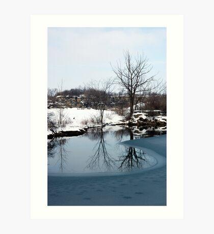 Winter Beauty Art Print