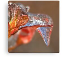 Goose Icicle ! Canvas Print