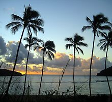Hanauma Bay Sunrise by karolina