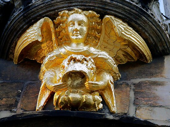 Angel by Trevor Patterson