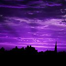 Purple Rays by Sarah Moore