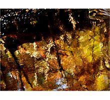 Reflexion Photographic Print