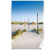 coastal dune Sankt Peter-Ording Poster