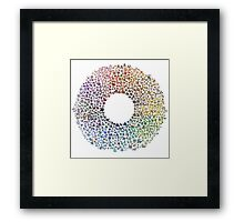 Pokemon Colorwheel Framed Print