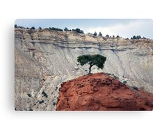 Alone On The Hill Canvas Print